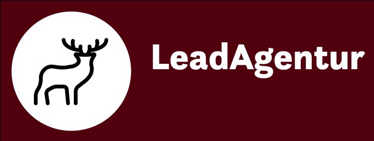 LeadAgentur Binder Grimmer GbR